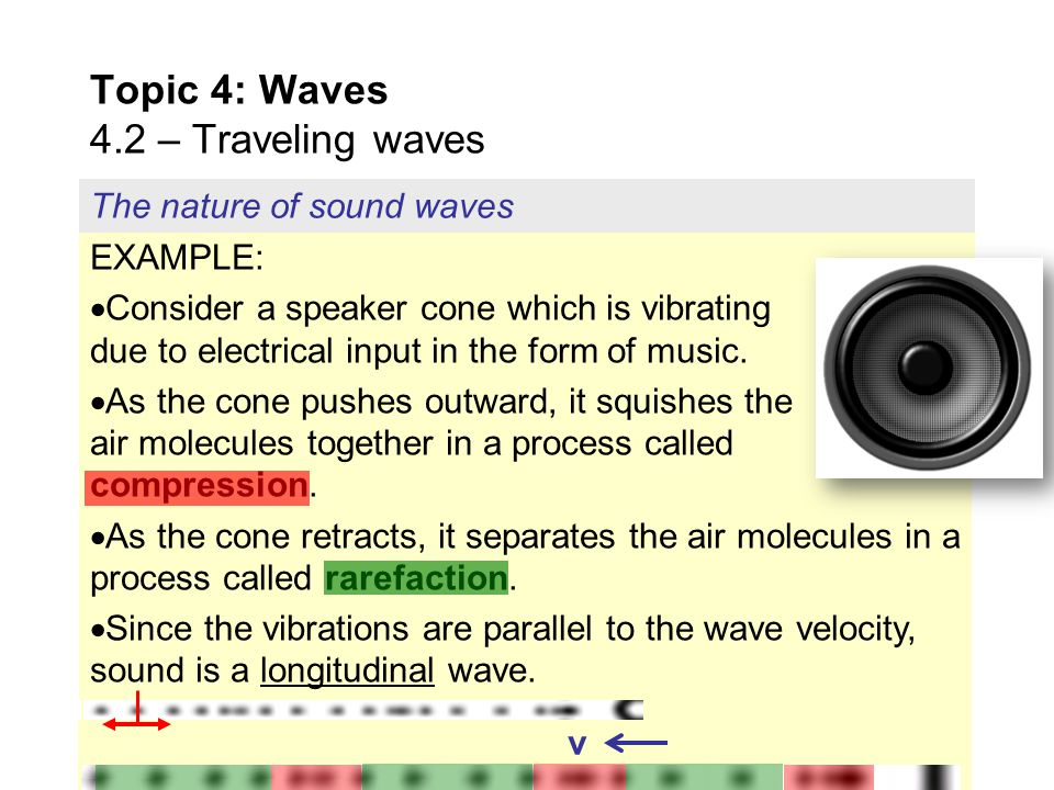 Transverse and longitudinal waves Topic 4: Waves 4.2 – Traveling waves PRACTICE: Categorize a water wave as transverse, or as longitudinal.  If you h