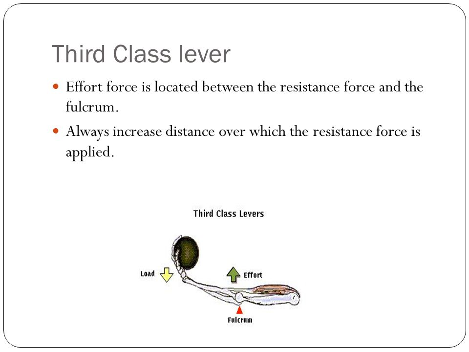 Third Class lever Effort force is located between the resistance force and the fulcrum. Always increase distance over which the resistance force is ap