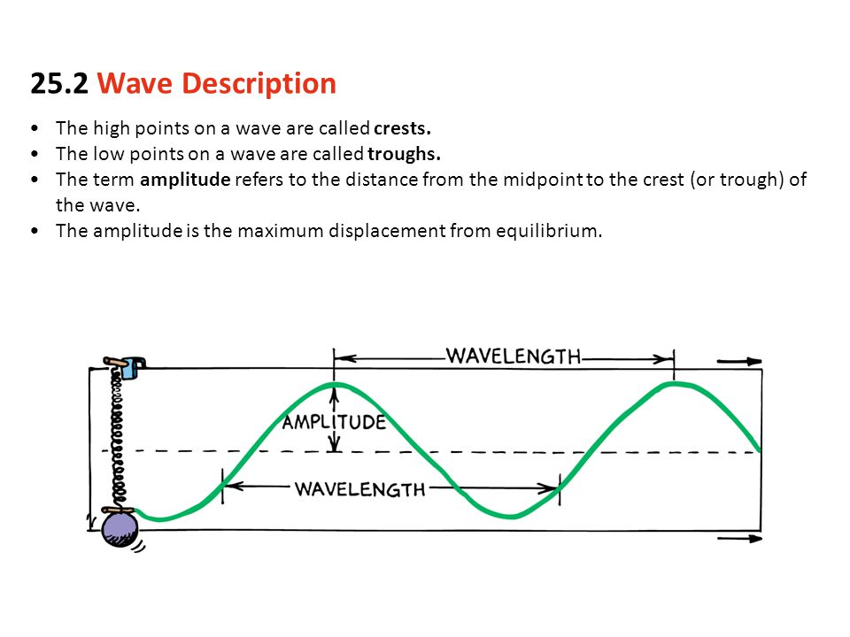 The high points on a wave are called crests. The low points on a wave are called troughs. The term amplitude refers to the distance from the midpoint