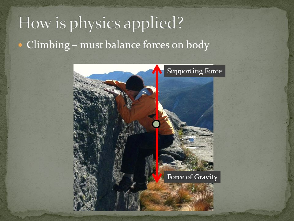Climbing – must balance forces on body Force of Gravity Supporting Force