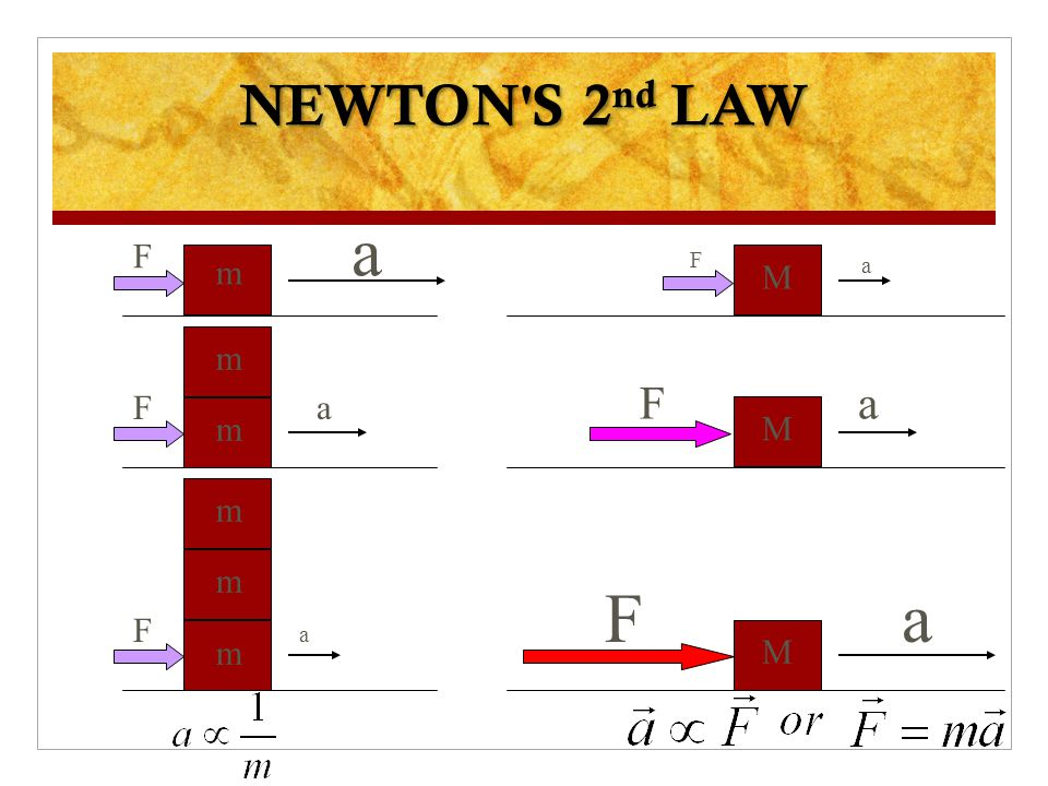 Newton's Second law of Motion …mathematically Net Force = (mass)(acceleration) F net = ma