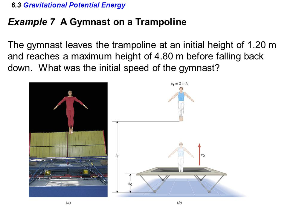 6.3 Gravitational Potential Energy Example 7 A Gymnast on a Trampoline The gymnast leaves the trampoline at an initial height of 1.20 m and reaches a