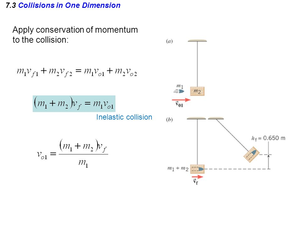 7.3 Collisions in One Dimension Apply conservation of momentum to the collision: Inelastic collision