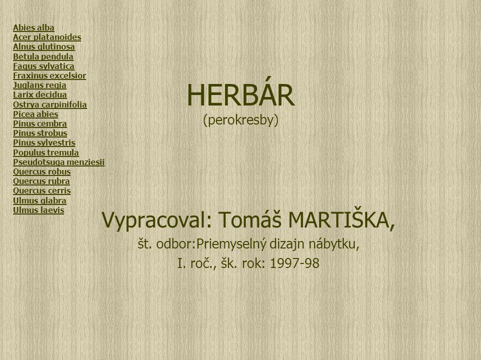 HERBÁR (perokresby) Vypracoval: Tomáš MARTIŠKA, št.