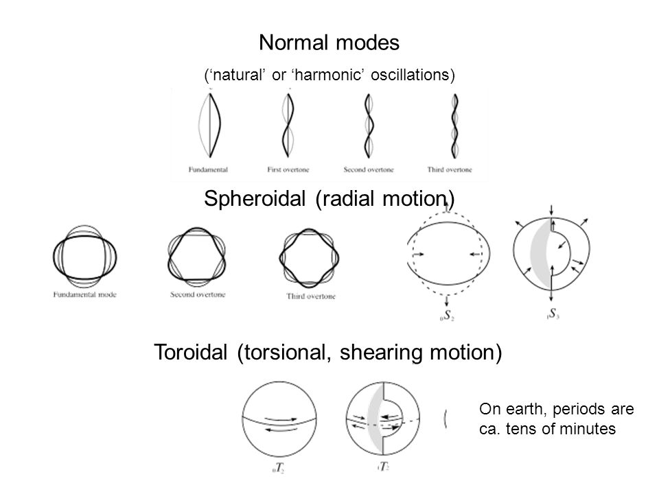 Normal modes ('natural' or 'harmonic' oscillations) Toroidal (torsional, shearing motion) Spheroidal (radial motion) On earth, periods are ca.