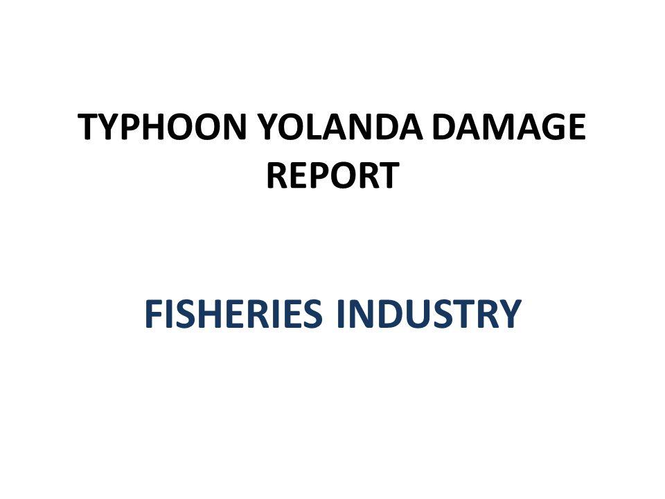 TYPHOON YOLANDA DAMAGE REPORT FISHERIES INDUSTRY