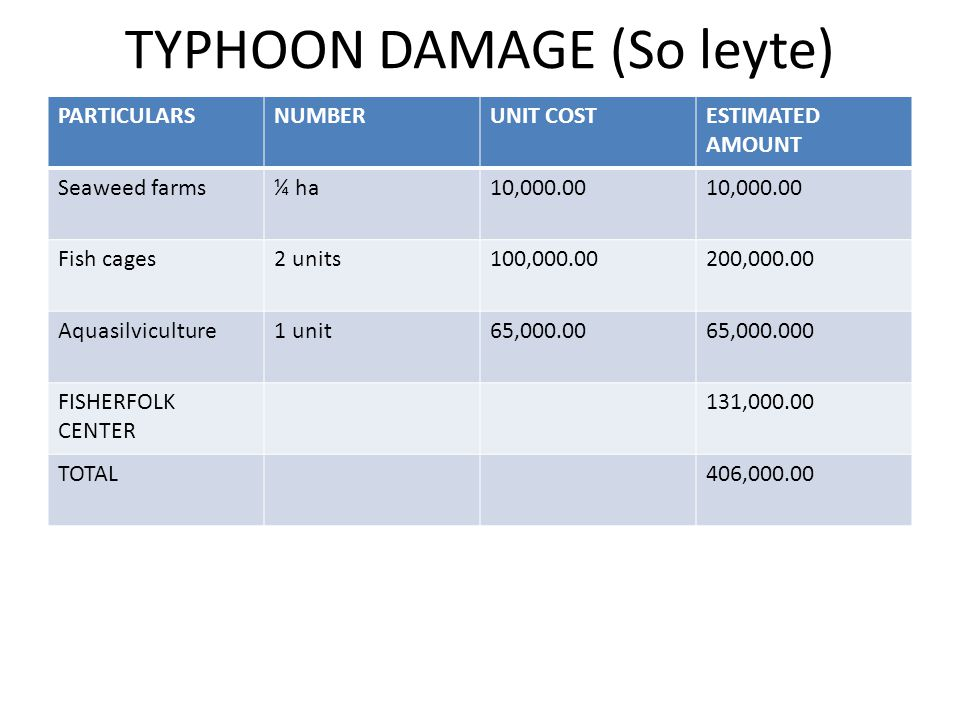TYPHOON DAMAGE (So leyte) PARTICULARSNUMBERUNIT COSTESTIMATED AMOUNT Seaweed farms¼ ha10,000.00 Fish cages2 units100,000.00200,000.00 Aquasilviculture1 unit65,000.0065,000.000 FISHERFOLK CENTER 131,000.00 TOTAL406,000.00