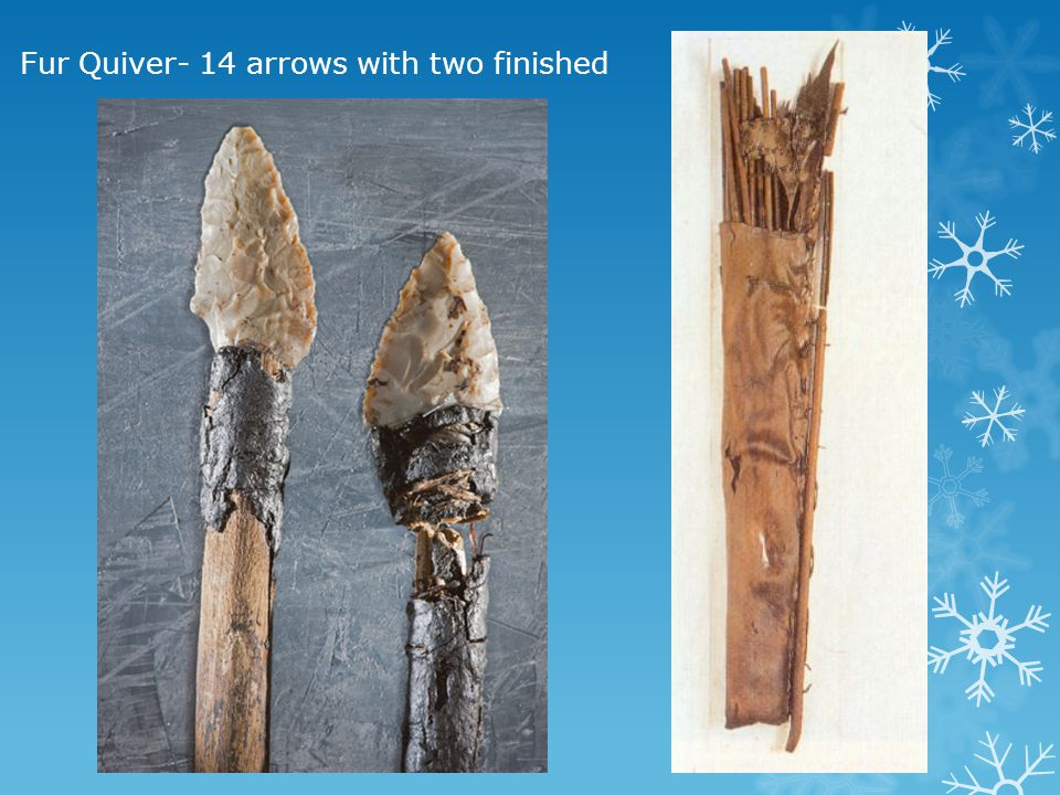 Fur Quiver- 14 arrows with two finished