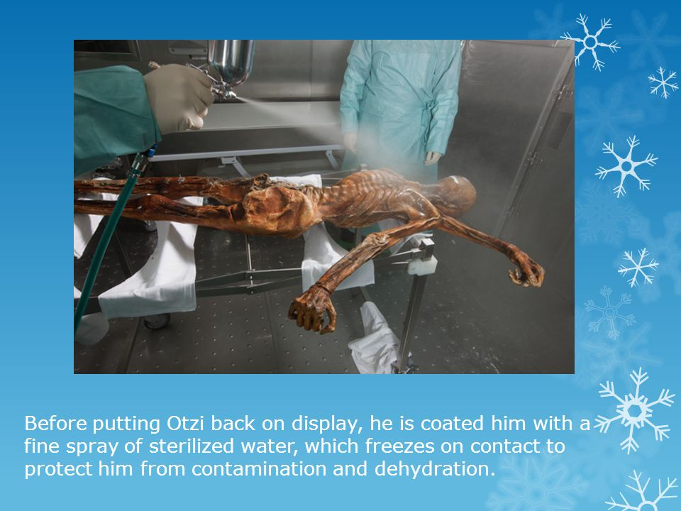 Before putting Otzi back on display, he is coated him with a fine spray of sterilized water, which freezes on contact to protect him from contamination and dehydration.