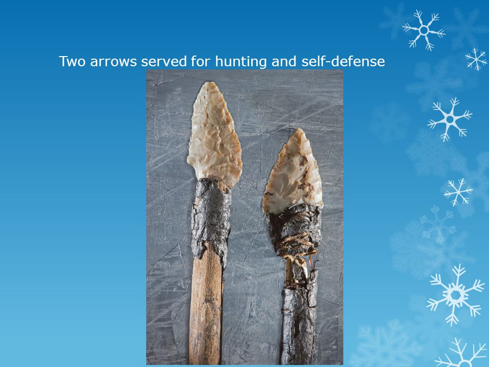 Two arrows served for hunting and self-defense