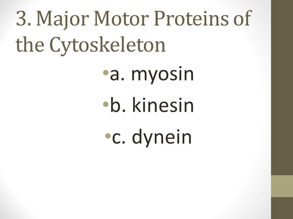 3. Major Motor Proteins of the Cytoskeleton a. myosin b. kinesin c. dynein