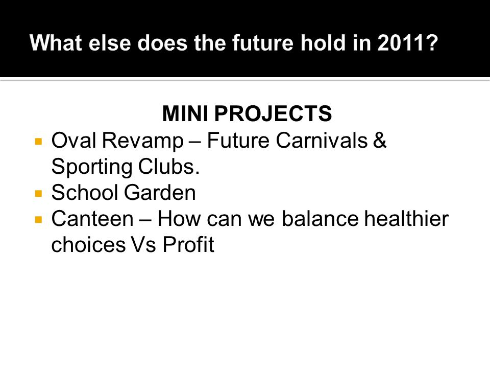 MINI PROJECTS  Oval Revamp – Future Carnivals & Sporting Clubs.