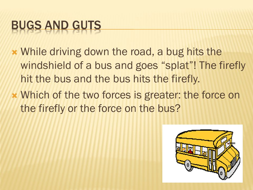  While driving down the road, a bug hits the windshield of a bus and goes splat .