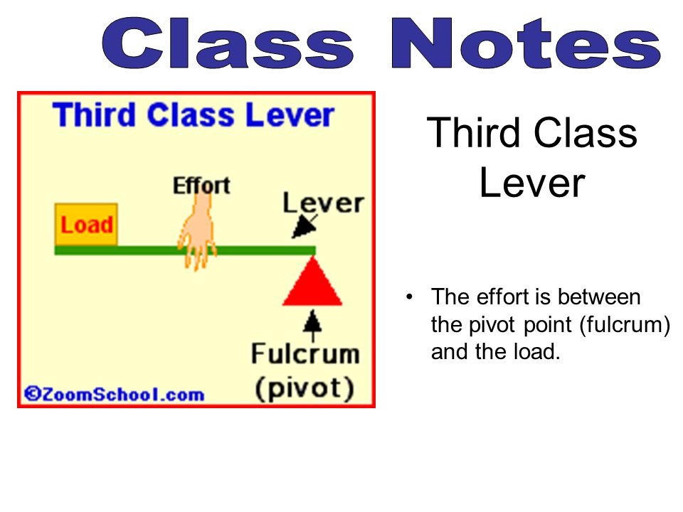Third Class Lever The effort is between the pivot point (fulcrum) and the load.