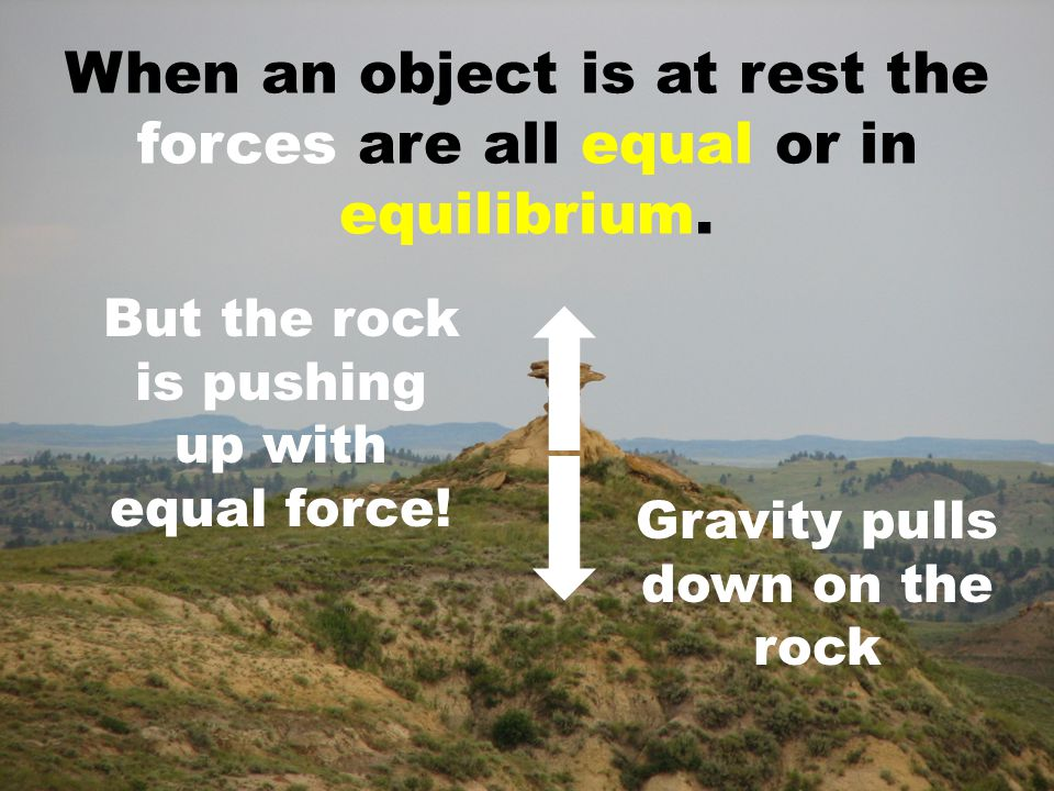 When an object is at rest the forces are all equal or in equilibrium. Gravity pulls down on the rock But the rock is pushing up with equal force!