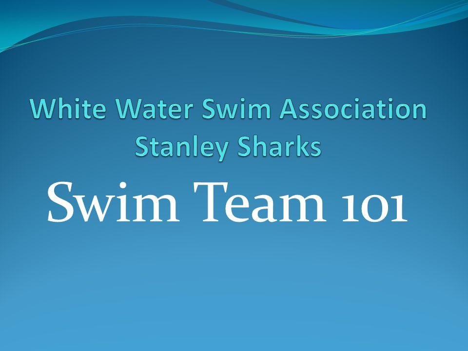 Swim Team 101