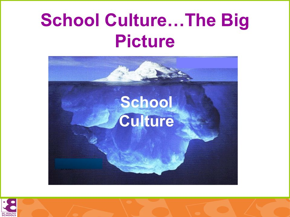 School Culture…The Big Picture