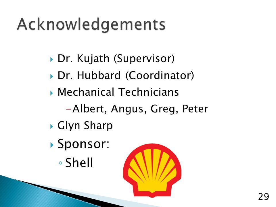  Dr. Kujath (Supervisor)  Dr. Hubbard (Coordinator)  Mechanical Technicians -Albert, Angus, Greg, Peter  Glyn Sharp  Sponsor: ◦ Shell 29