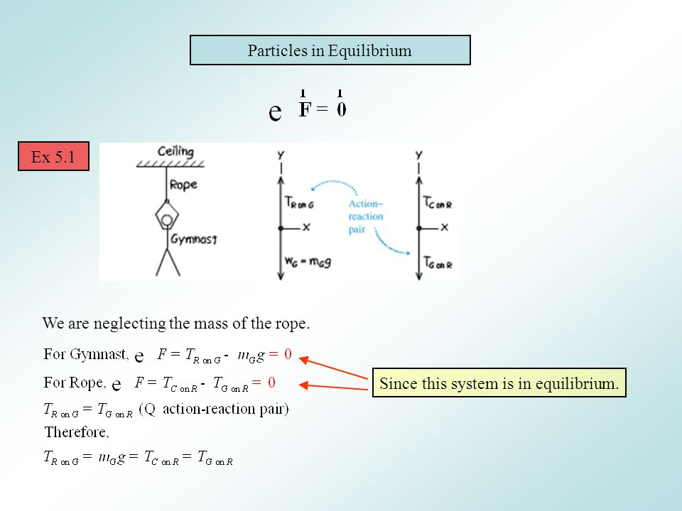 Particles in Equilibrium Ex 5.1 We are neglecting the mass of the rope. Since this system is in equilibrium.