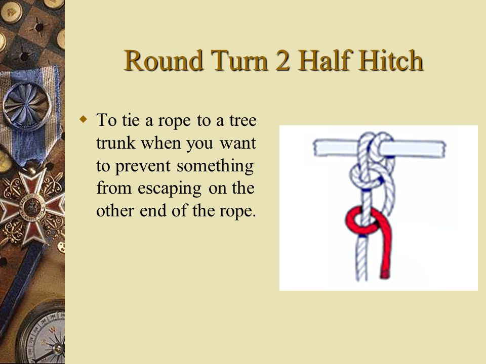 Round Turn 2 Half Hitch TT o tie a rope to a tree trunk when you want to prevent something from escaping on the other end of the rope.