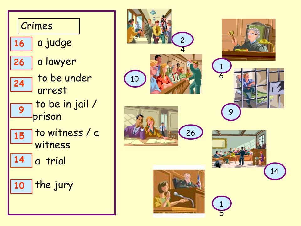 Crimes a judge a lawyer to be under arrest to be in jail / prison to witness / a witness a trial the jury 16 26 24 9 15 14 10 1616 26 2424 9 1515 14 10