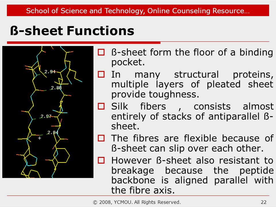 School of Science and Technology, Online Counseling Resource… ß-sheet Functions  ß-sheet form the floor of a binding pocket.