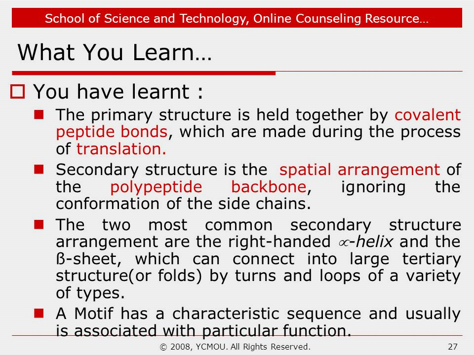 School of Science and Technology, Online Counseling Resource… What You Learn…  You have learnt : The primary structure is held together by covalent peptide bonds, which are made during the process of translation.