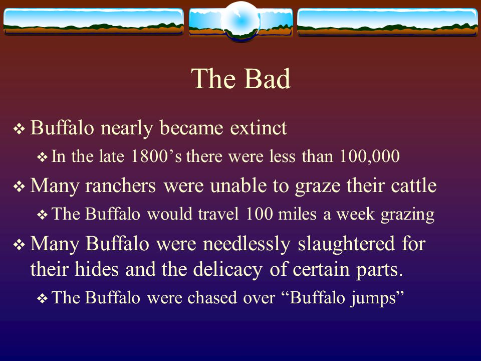 The Good  Provided food  Most of the Buffalo was used as a food source  The hair was used for rope  The fur was used for clothing, shelter, and blankets  Was used as a trading tool  Hides were traded for weapons and horses  Was used as a weather indicator  The tribes followed the grazing patterns of the Buffalo