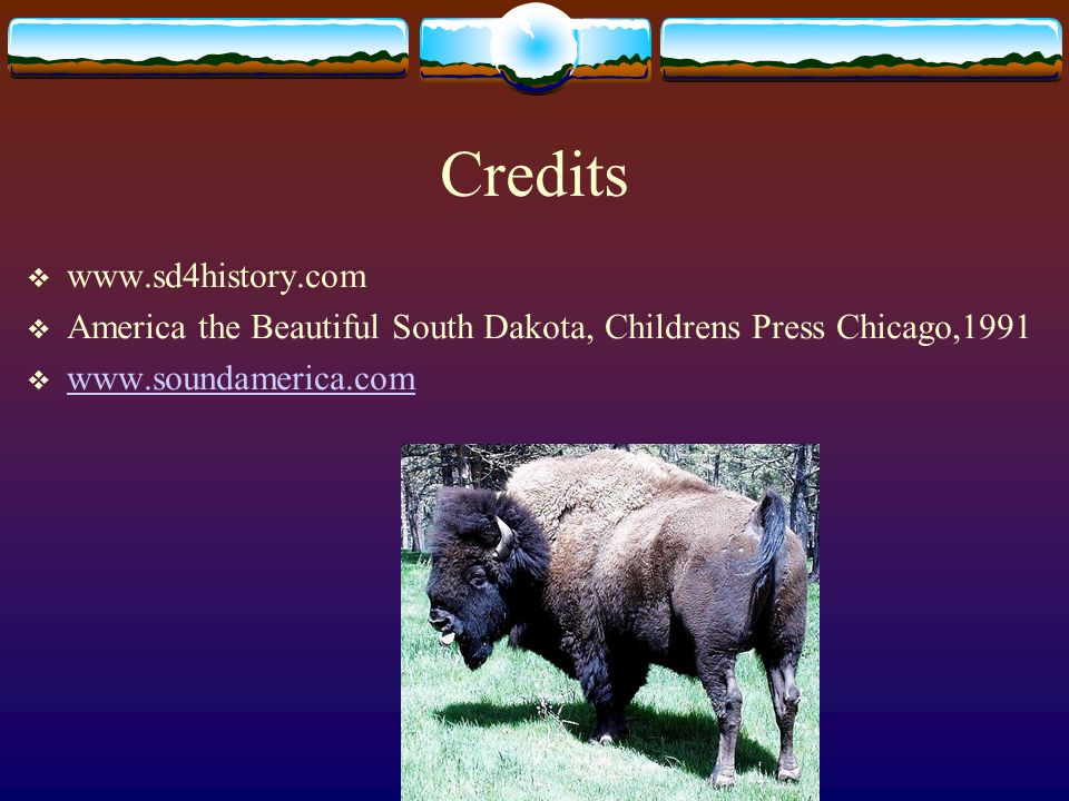 The Buffalo Today  Raised mostly for food  Buffalo meat is healthy  Raised mostly in State Parks and on Reservations  Buffalo can be found in the Badlands Natl.