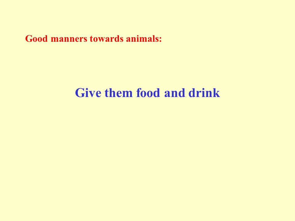 Good manners towards animals: Give them food and drink