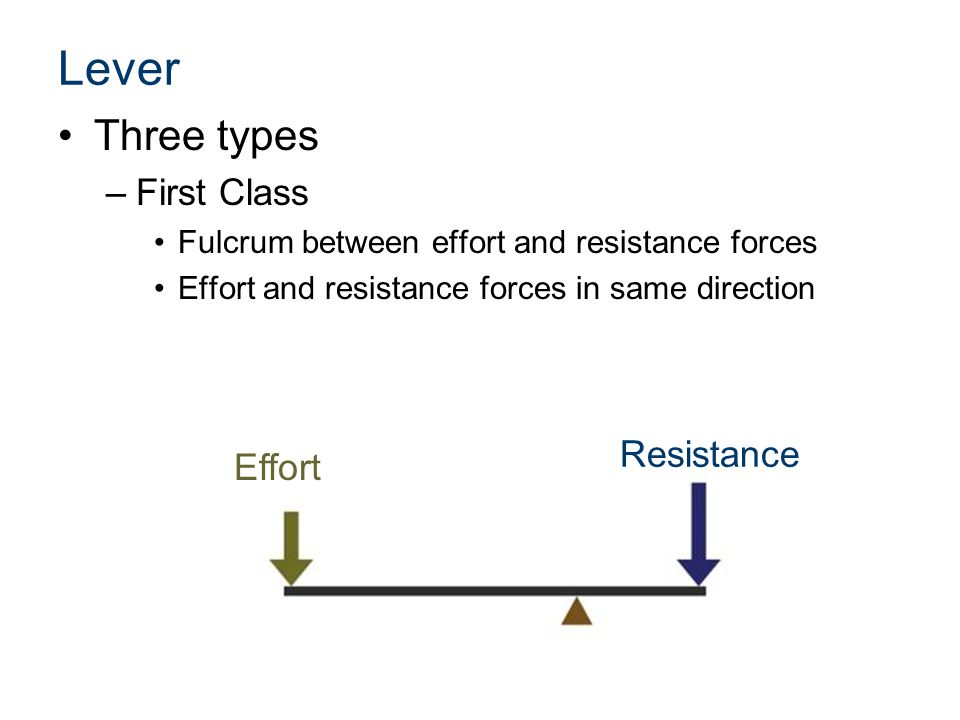 Lever Three types –First Class Fulcrum between effort and resistance forces Effort and resistance forces in same direction Effort Resistance