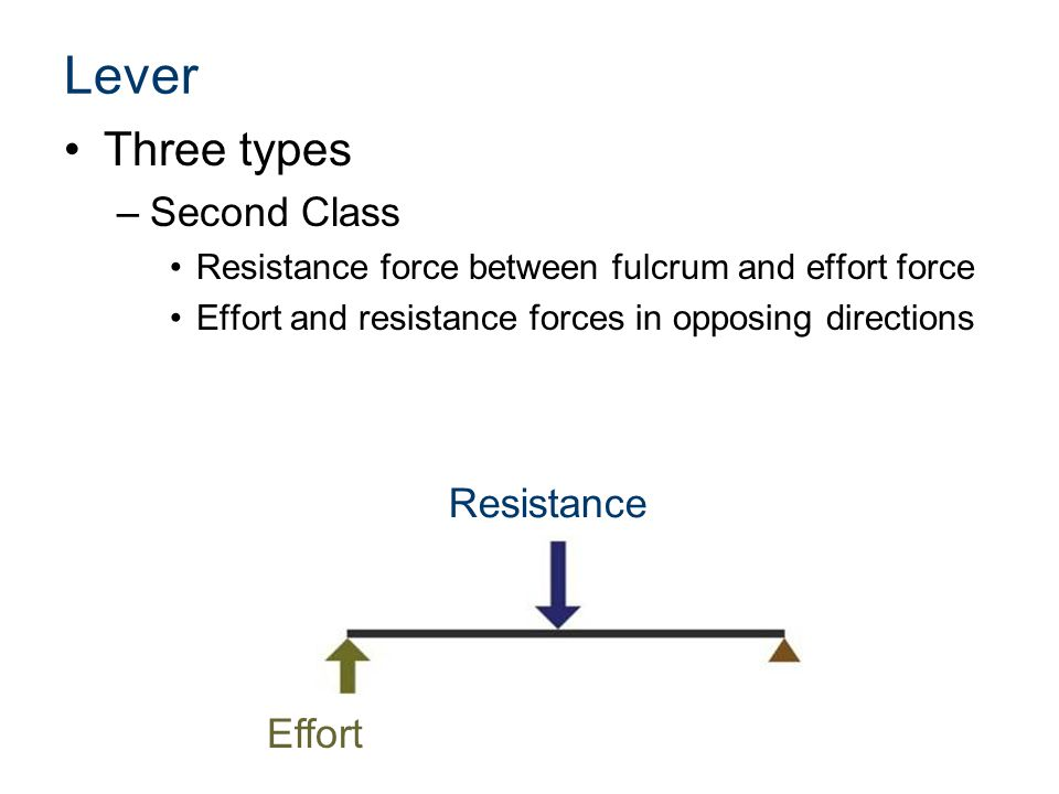 Lever Three types –Second Class Resistance force between fulcrum and effort force Effort and resistance forces in opposing directions Resistance Effort