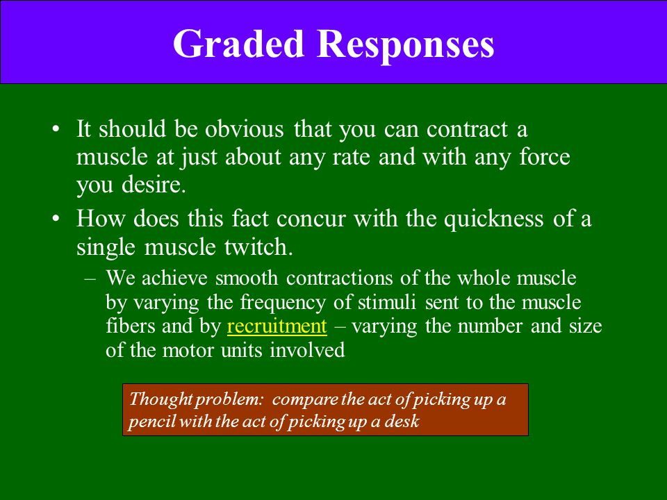 Graded Responses It should be obvious that you can contract a muscle at just about any rate and with any force you desire. How does this fact concur w