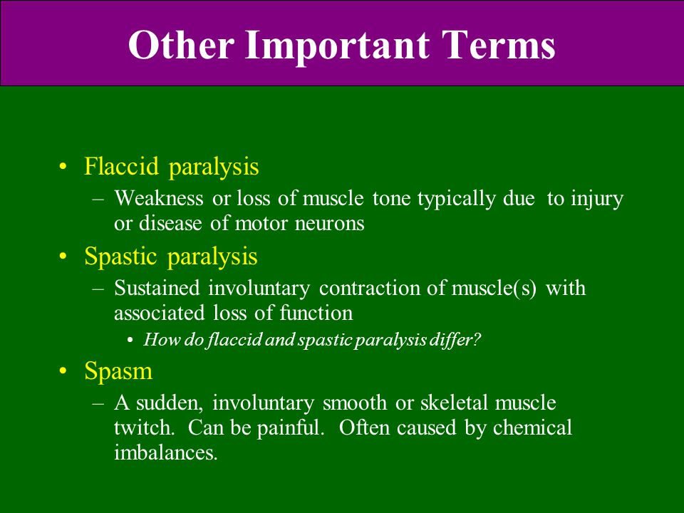 Other Important Terms Flaccid paralysis –Weakness or loss of muscle tone typically due to injury or disease of motor neurons Spastic paralysis –Sustai