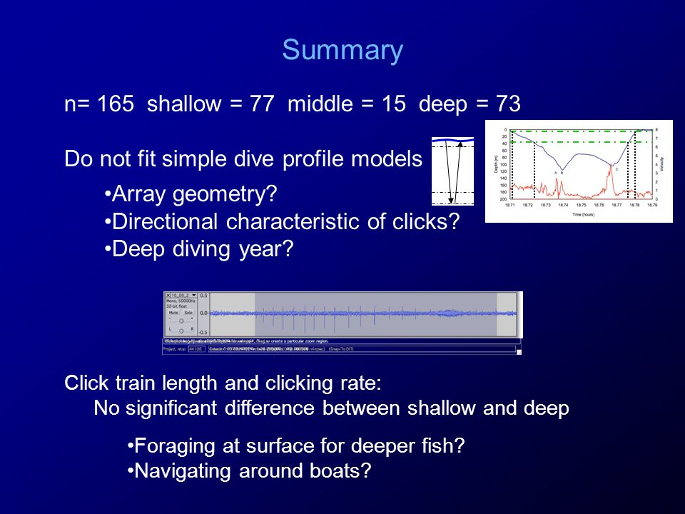 Summary n= 165 shallow = 77 middle = 15 deep = 73 Do not fit simple dive profile models Array geometry.