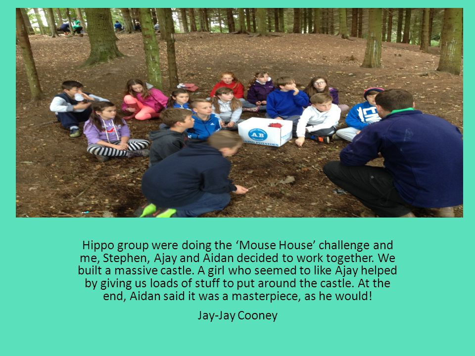 Hippo group were doing the 'Mouse House' challenge and me, Stephen, Ajay and Aidan decided to work together. We built a massive castle. A girl who see