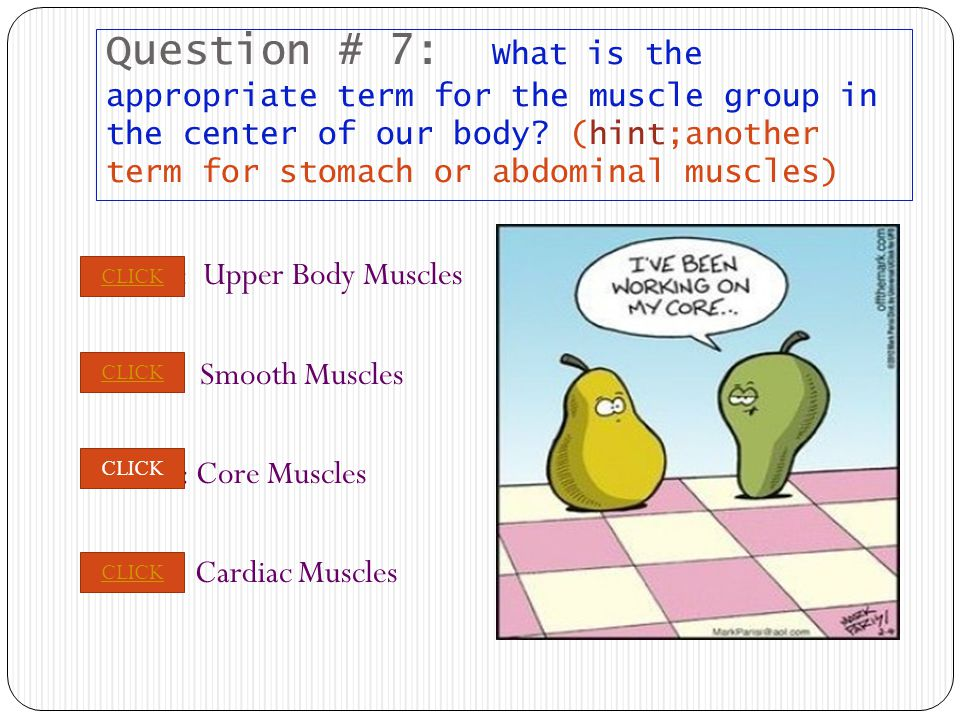 PREVIOUS NEXT Question # 7: What is the appropriate term for the muscle group in the center of our body.