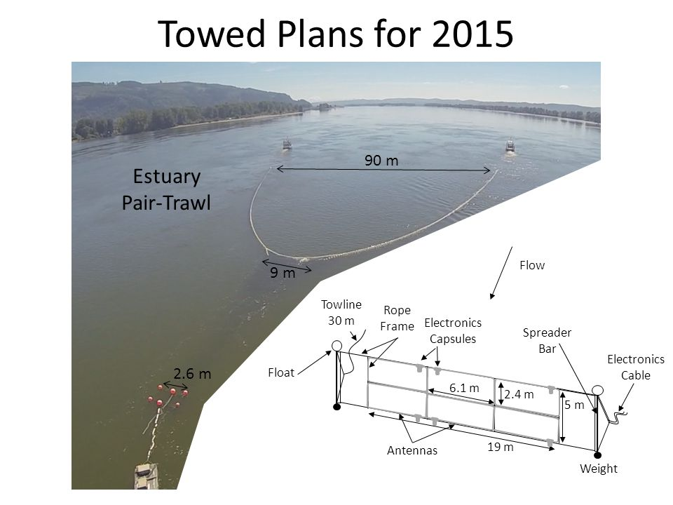 Towed Plans for 2015 90 m 9 m 2.6 m Spreader Bar Towline 30 m Weight Float Rope Frame Antennas 5 m 6.1 m 19 m Flow Electronics Cable Electronics Capsules 2.4 m Estuary Pair-Trawl