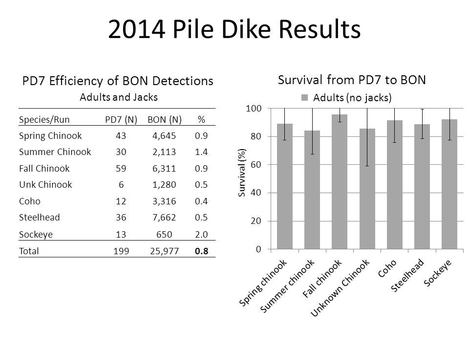 Travel Time from PD7 to BON 2014 Pile Dike Results