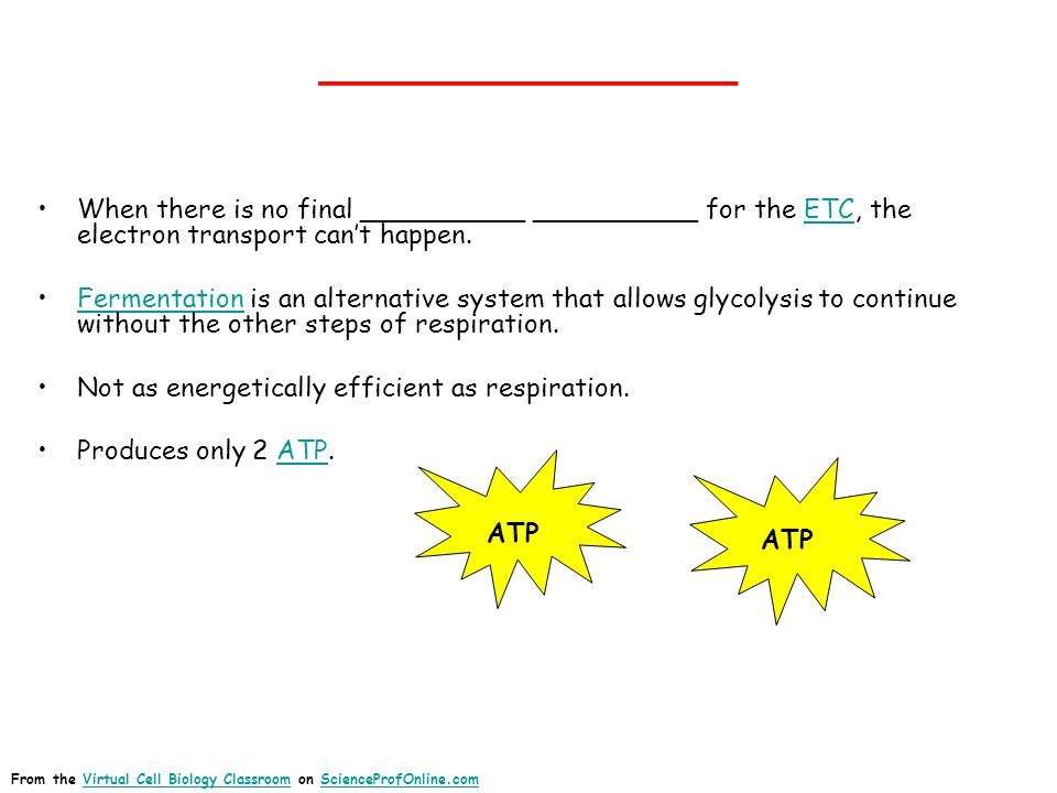 ______________ When there is no final __________ __________ for the ETC, the electron transport can't happen.ETC Fermentation is an alternative system that allows glycolysis to continue without the other steps of respiration.Fermentation Not as energetically efficient as respiration.
