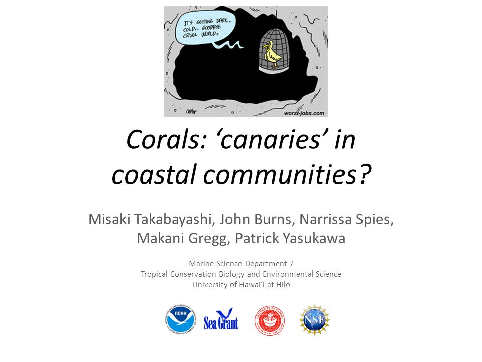 Corals: 'canaries' in coastal communities.