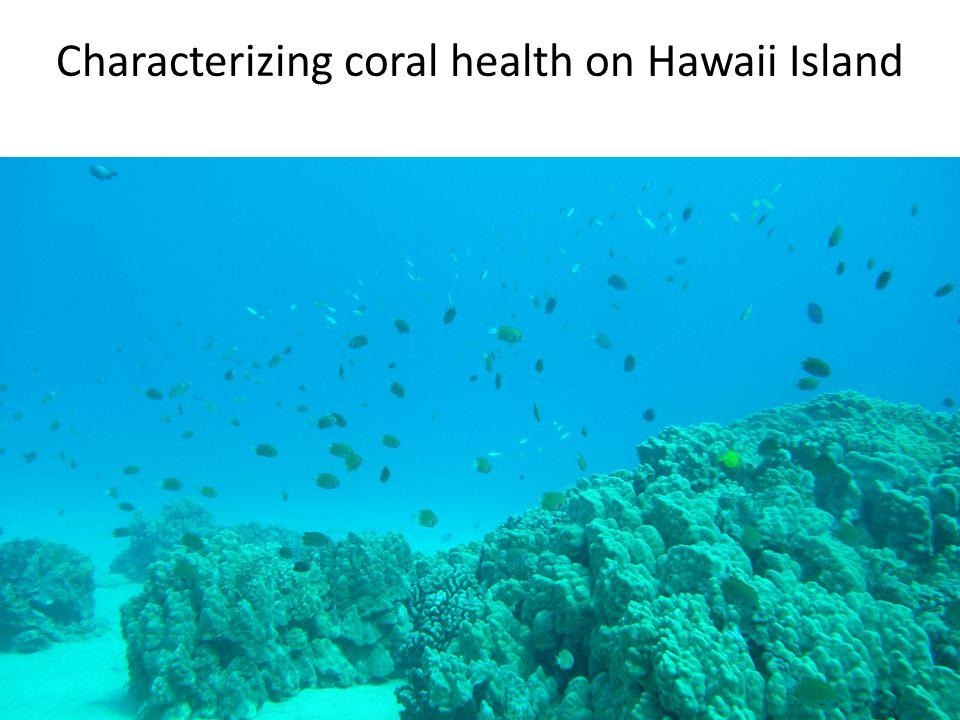 Characterizing coral health on Hawaii Island