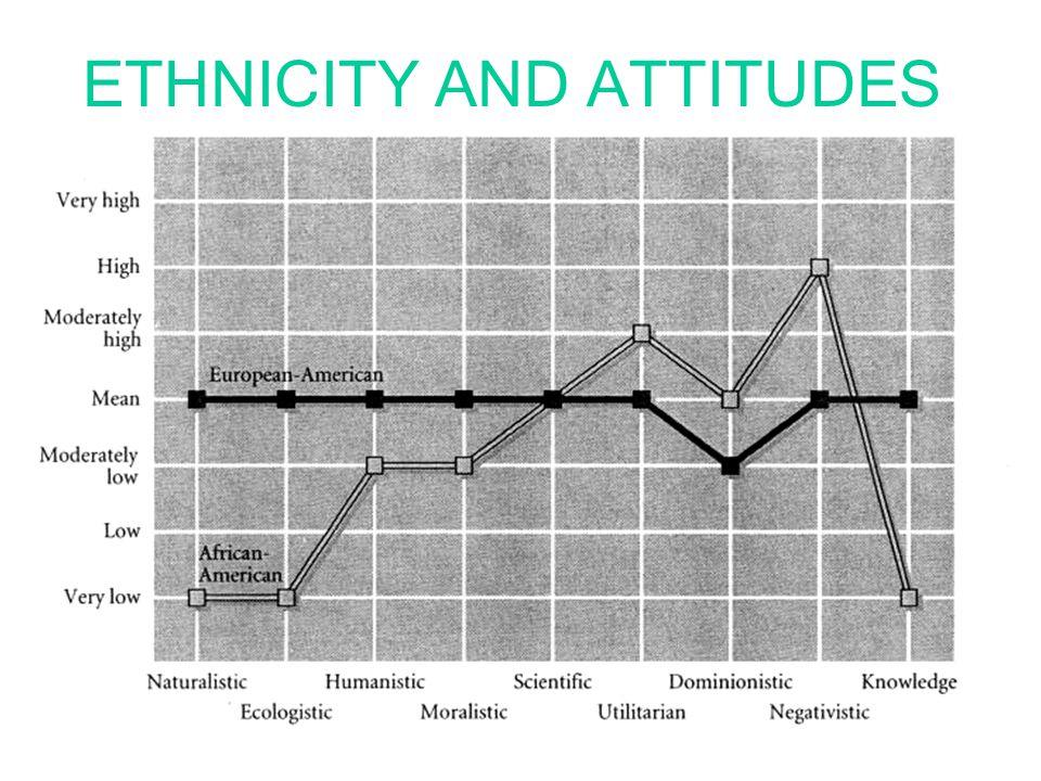 ETHNICITY AND ATTITUDES