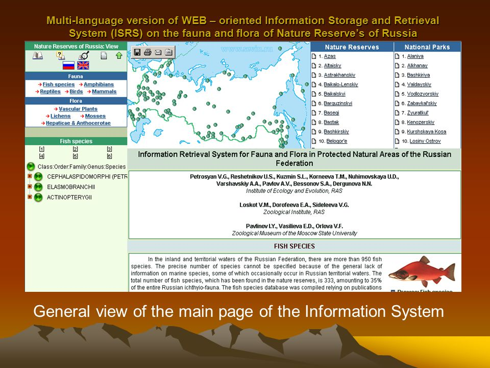 Multi-language version of WEB – oriented Information Storage and Retrieval System (ISRS) on the fauna and flora of Nature Reserve's of Russia The standard WEB-page of the avian species presentation of Russian Reserves by the example of Asiatic White Ibis -Threskiornis melanocephalus (Lapham, 1790)