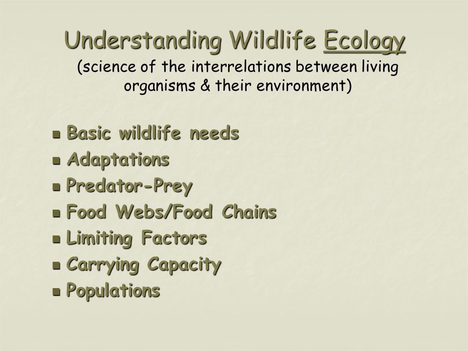 Understanding Wildlife Ecology Basic wildlife needs Basic wildlife needs Adaptations Adaptations Predator-Prey Predator-Prey Food Webs/Food Chains Food Webs/Food Chains Limiting Factors Limiting Factors Carrying Capacity Carrying Capacity Populations Populations (science of the interrelations between living organisms & their environment)