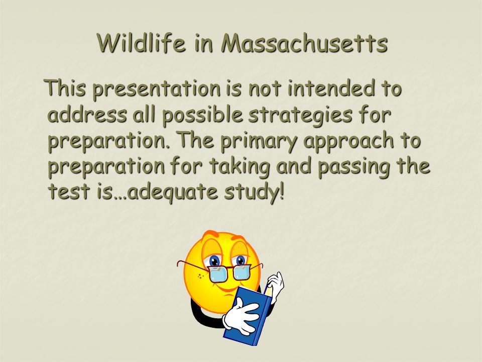 Wildlife in Massachusetts This presentation is not intended to address all possible strategies for preparation.