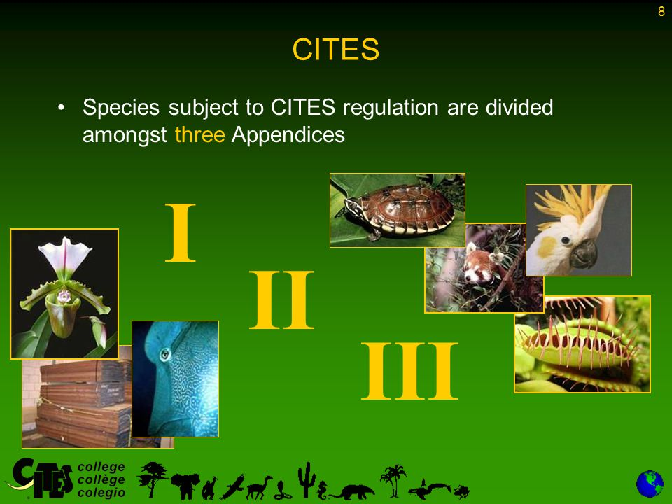 9 CITES-listed species Appendix I – –Species threatened with extinction – –Not to be used for primarily commercial purposes – –Almost 530 animal species and some 300 plant species – –International trade is generally prohibited