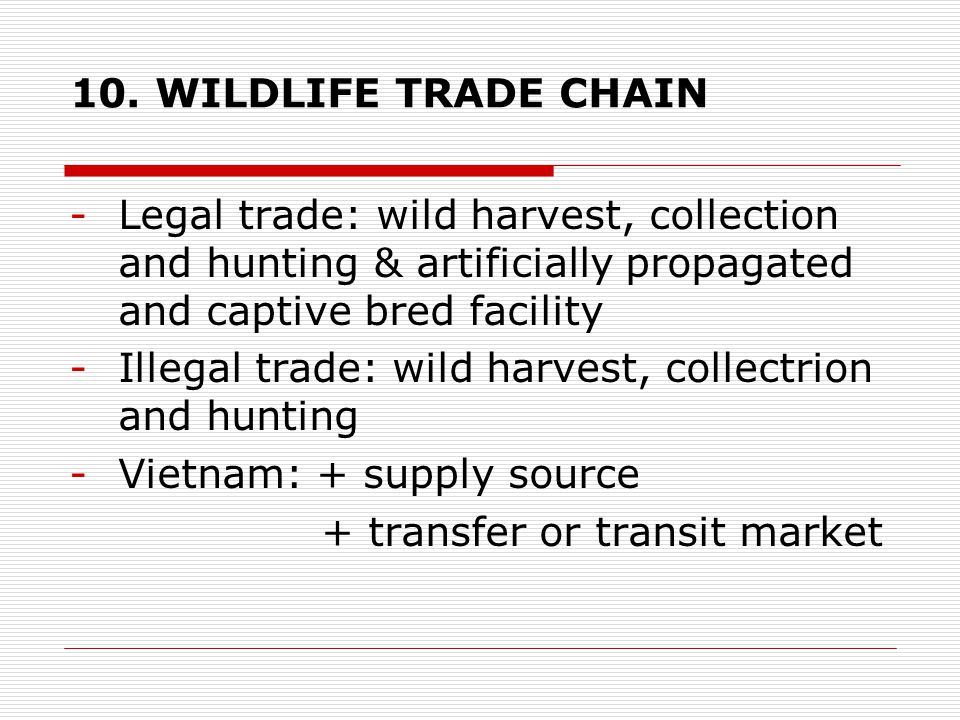 10. WILDLIFE TRADE CHAIN -Legal trade: wild harvest, collection and hunting & artificially propagated and captive bred facility -Illegal trade: wild h