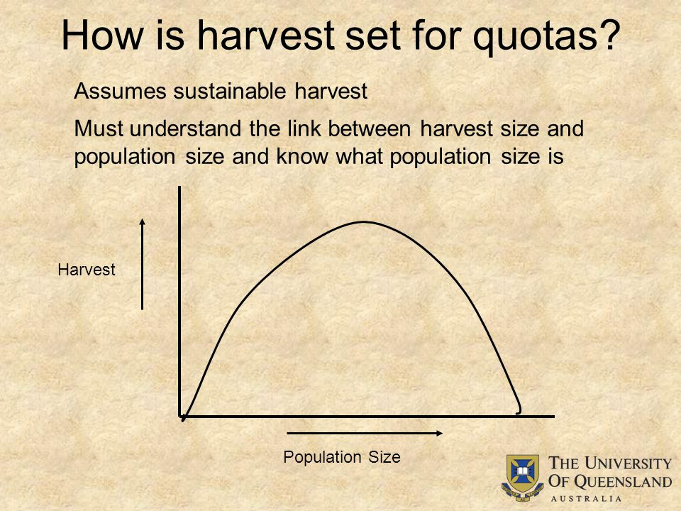 How is harvest set for quotas.