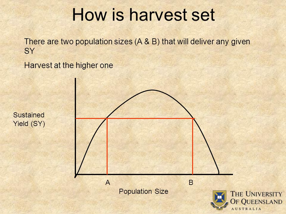 How is harvest set Population Size Sustained Yield (SY) There are two population sizes (A & B) that will deliver any given SY Harvest at the higher one AB